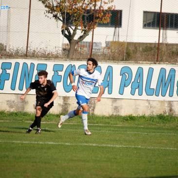 Palmense (98)